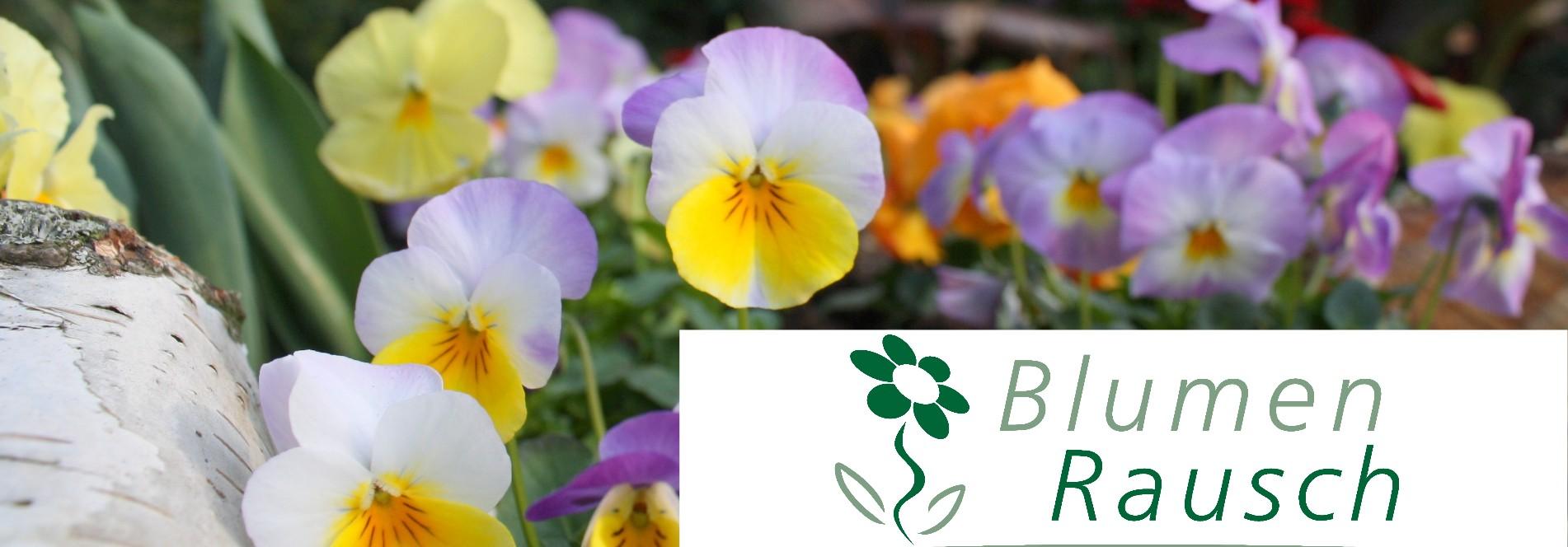 Blumen Rausch  in Durlach Blumenladen und Friedhofsgaertnerei